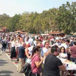 Festival delle Sagre_1